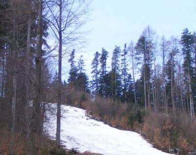 Lyžiarsky vlek pri Chate nad Tajovom