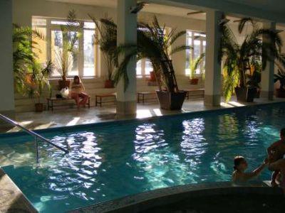 Bazén v hoteli Park